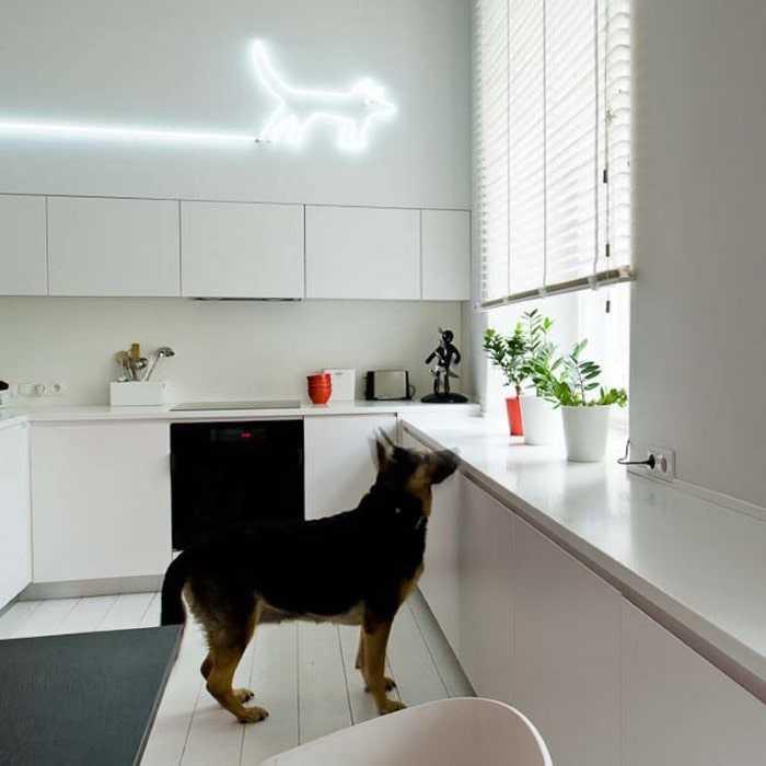 Mieszkanie z antresolą, Kwadratura, projekty wnętrz